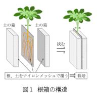根箱の構造