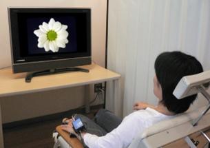 実験の様子。テレビで花の画像を見ている。